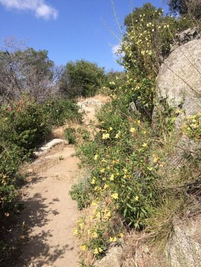 near mexican border.jpg