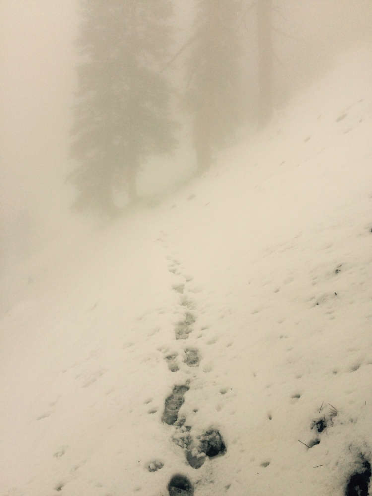 snow baden powell.jpg