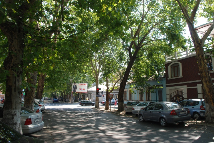 leafy_streets_of_chisinau_moldova_7992625543